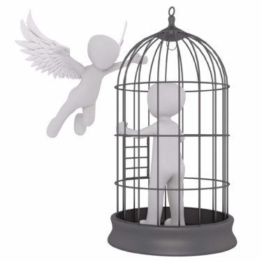 コロナ禍で消費者が「飛ぶことを忘れた鳥」になる? - 行動→習慣→思考停止の怖さ