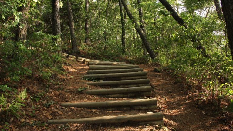 不便な階段