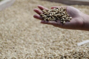コーヒー市場に「フォースウェーブ」到来中 -「家飲みコーヒー」の主役はシニア